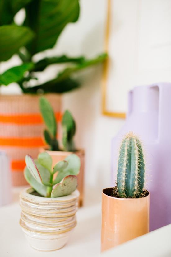 Copper + Cacti