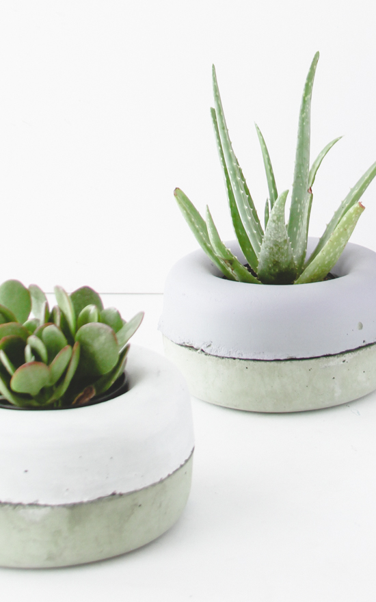 Make This // Modern Concrete Planters in Minutes