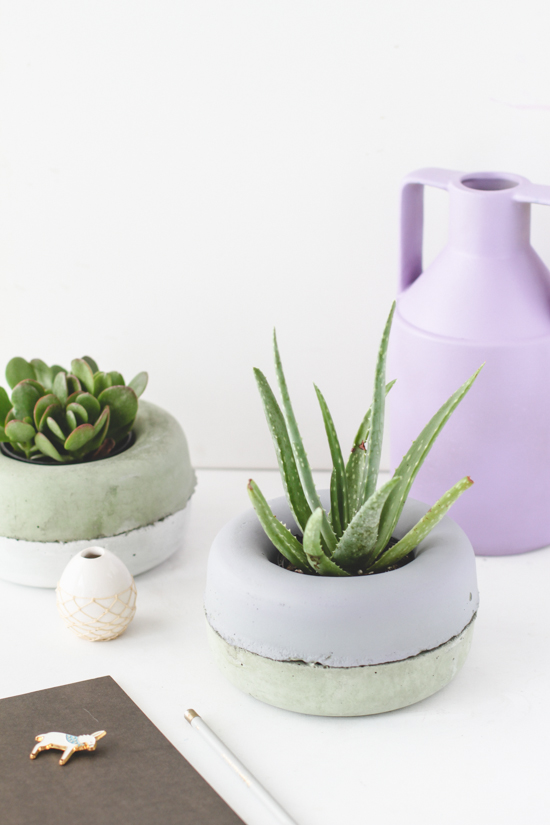 DIY // Modern Concrete Planters for $2