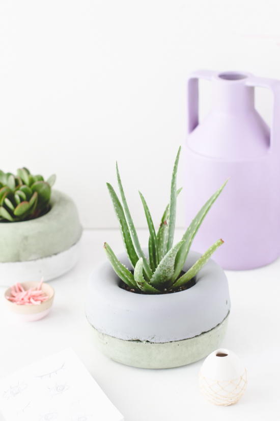 DIY // Modern concrete planters made of sprinkler guards