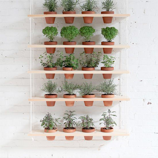 Vertical Garden + Decorative Wall Art