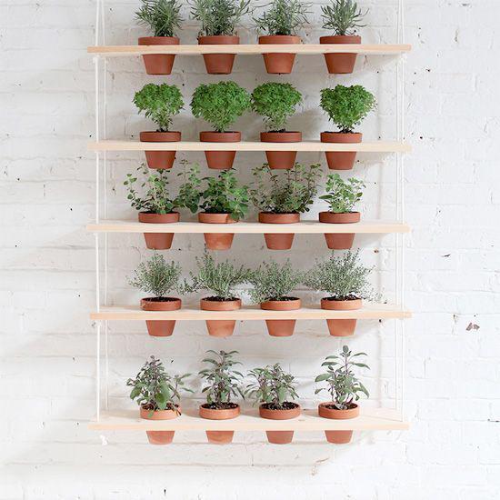 Vertical Garden + Decorative Wall Art
