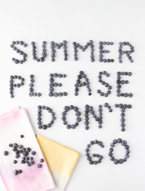 Summer Please Don't Go
