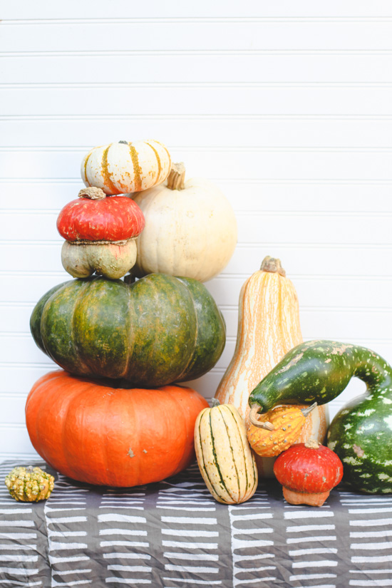 The Quick Guide to Fall Decorating with Gourds, Squash, and Pumpkins