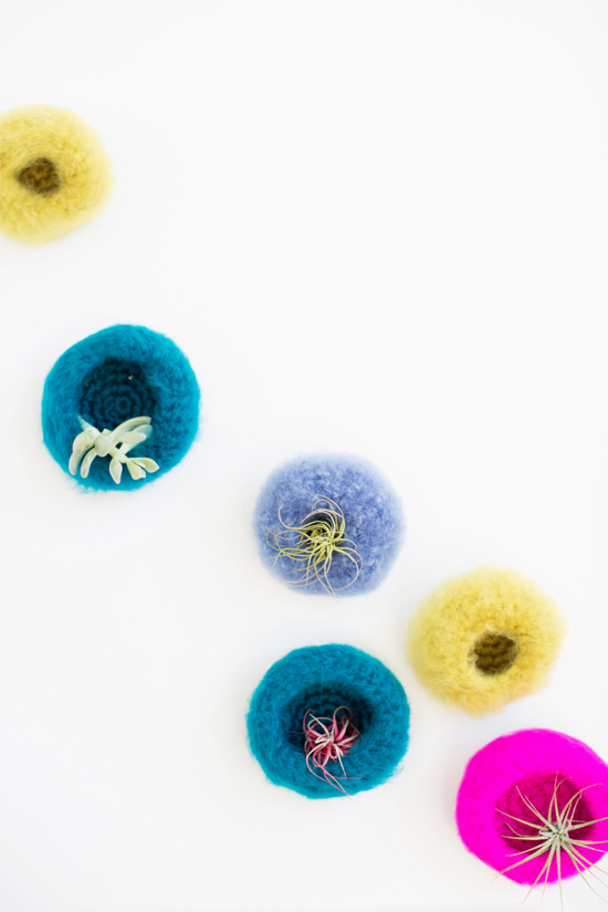 Crocheted Air Plant Wall Pods
