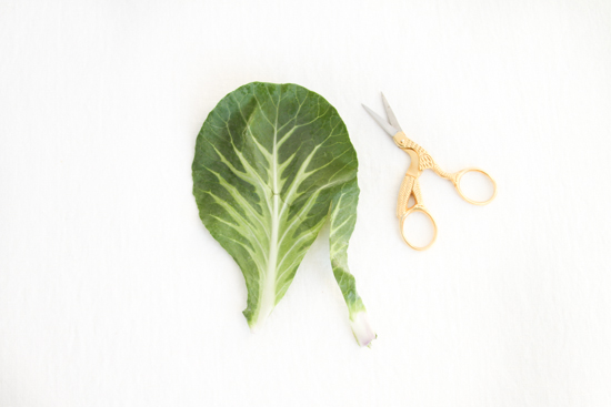 Cutting a leaf into a heart for Valentine's Day