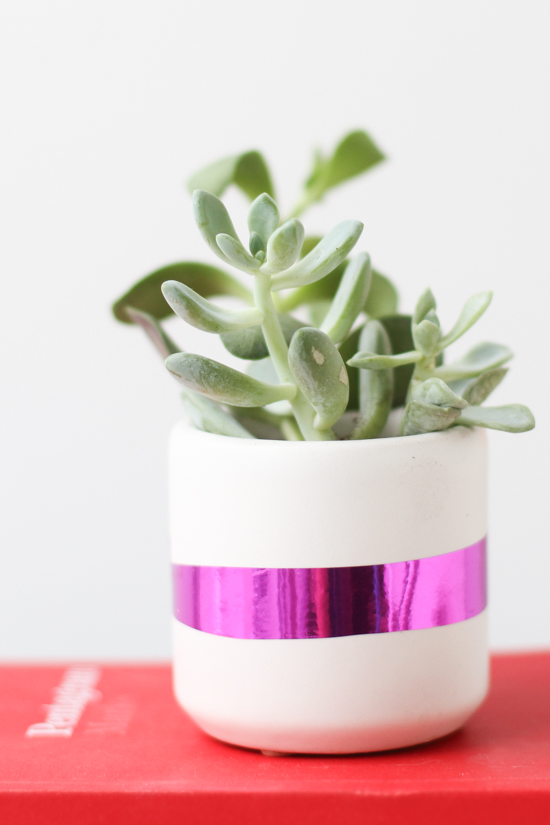 DIY Mylar Planter