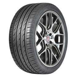 Delinte Tires DH2 Passenger All Season Tire - 245/45R17XL 99W