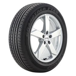 Dunlop Tires Grandtrek PT20 A/S Passenger All Season Tire