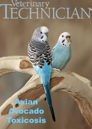 https://s3.amazonaws.com/assets.prod.vetlearn.com/8e/4a2090a6aa11e2896d005056ad4735/file/VT%20July%2013%20new%20cover.jpg