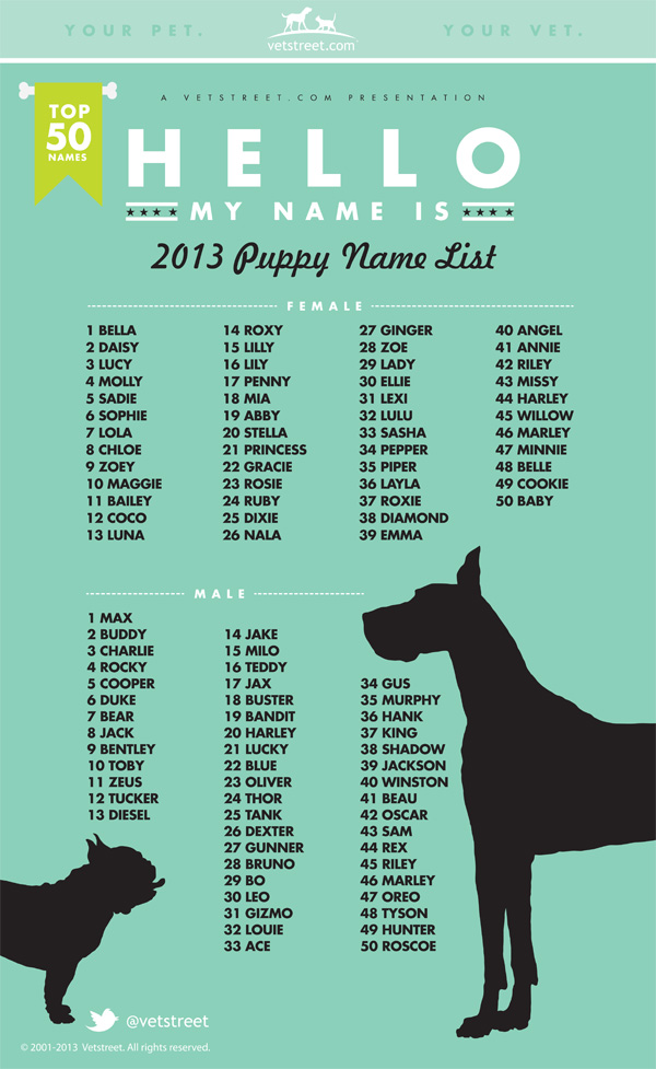 Pet Sitting With Tlc Most Popular Dogs Names In 2013 Your Place