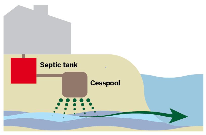 Septic tank: $5,500-$7,000