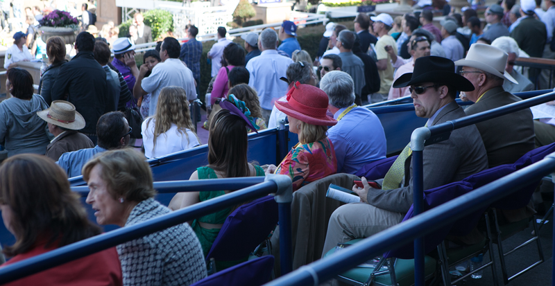 Breeders Cup Experiences Santa Anita Quintevents Club