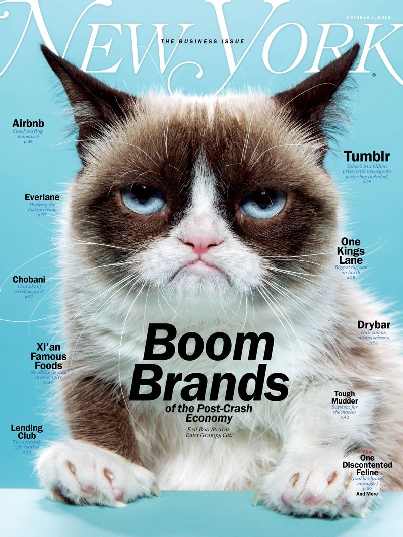 People Are Enjoying Grumpy Cat's Media Tour -- But Is She?