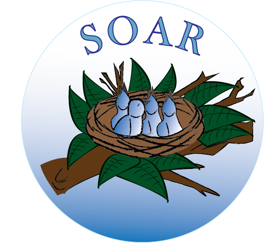 Soar_logo_neworiginal