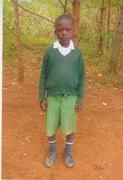 Elphas ogweno  n.thumb