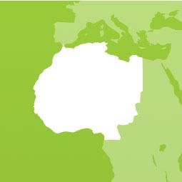 west-africa.jpg (large)