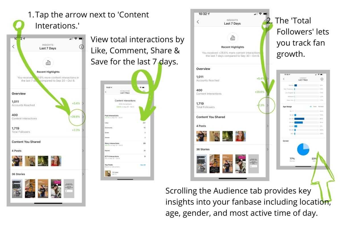 Instagram Insights Activity and Audience Tabs