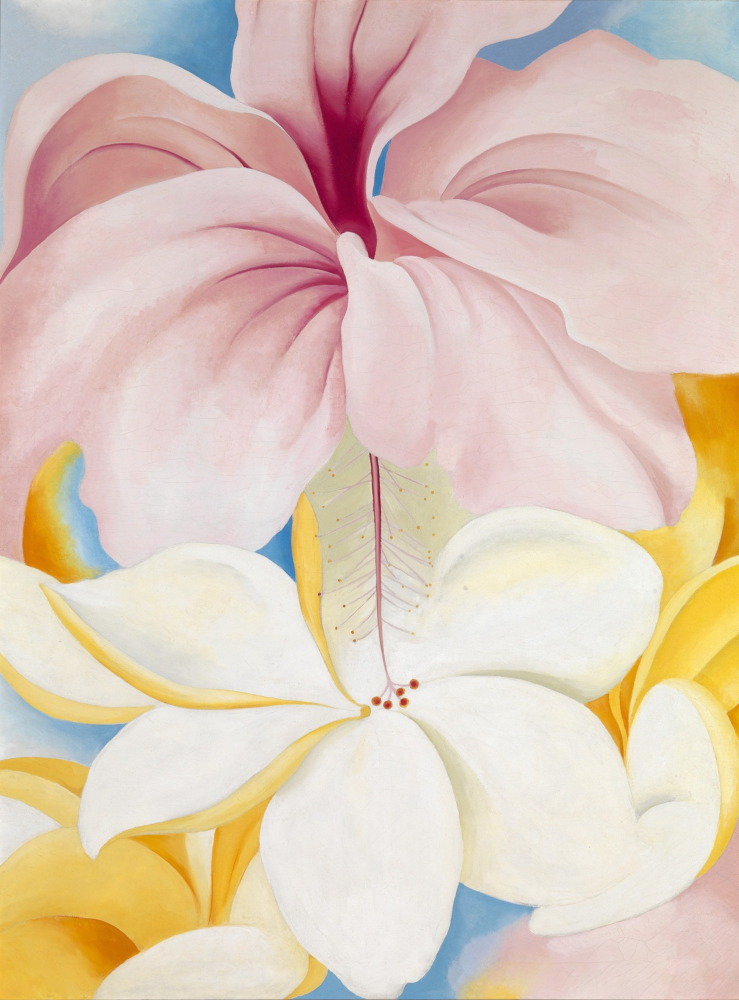 Image result for Georgia O'Keeffe, Hibiscus with Plumeria, 1939