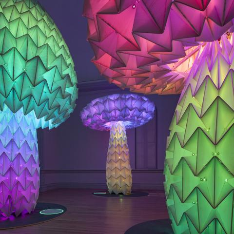 An image of Foldhaus' mechanical mushrooms inside the Renwick Gallery.