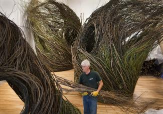 Splash Image - Patrick Dougherty: Branching Out