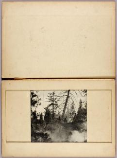 Media - 1950.2.70 - SAAM-1950.2.70_1 - 53300