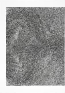 Untitled - 2009.6A-B - 70689
