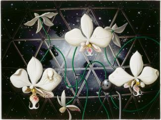 Rockman's oil painting of orchids in space.