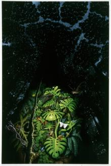 Rockman's oil painting of a jungle in the rain forest beneath a tree at twilight.