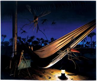Rockman's oil painting of a hammock being surrounded by mosquitoes.