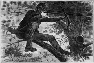 Homer's wood engraving on paper of a sharpshooter in a tree.