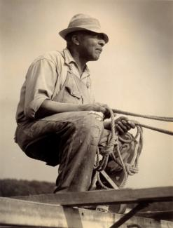 McNeill's gelatin silver print of  man sitting with reins in his hand.
