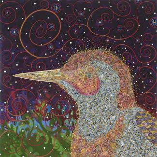 Exhibitons - Birds, Tomaselli, square