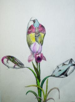 A drawing of a flower.