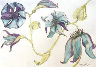 A drawing of four blue and purple flowers.