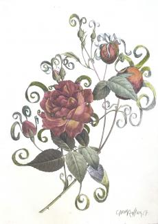 A drawing of a red rose.