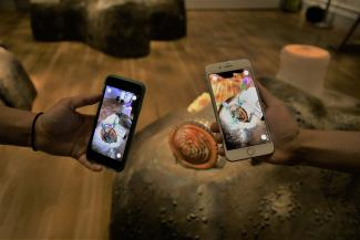 A photograph of two phones with artwork on them.