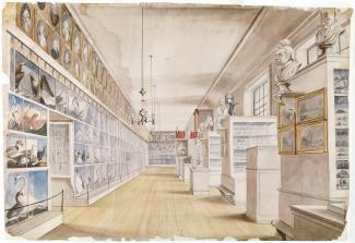 Exhibition - Humboldt, Charles Willson Peale and Titian Ramsay Peale, The Long Room, Interior of Front Room in Peale's Museum, 1822, watercolor over pencil on paper, 14 × 20 3/4 in, Detroit Institute of Arts, Founders Society Purchase, Director's Discreti