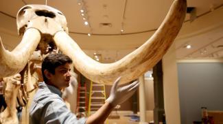 Blog - Mastodon, Hips don't lie