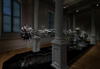 An installation photograph of Lauren Fensterstock's work