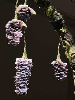 An installation photograph of flowers made of glass