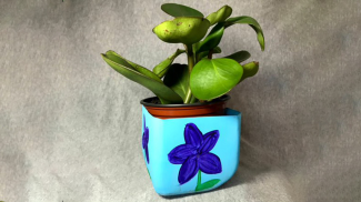 Blog - Upcycled Planter, April 28, 2021, sized for homepage