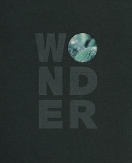 wonder_NEW_500.jpg