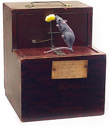 Blog Image 306 - Mousetrap 101: Patents and Innovation with Collector Alan Rothschild