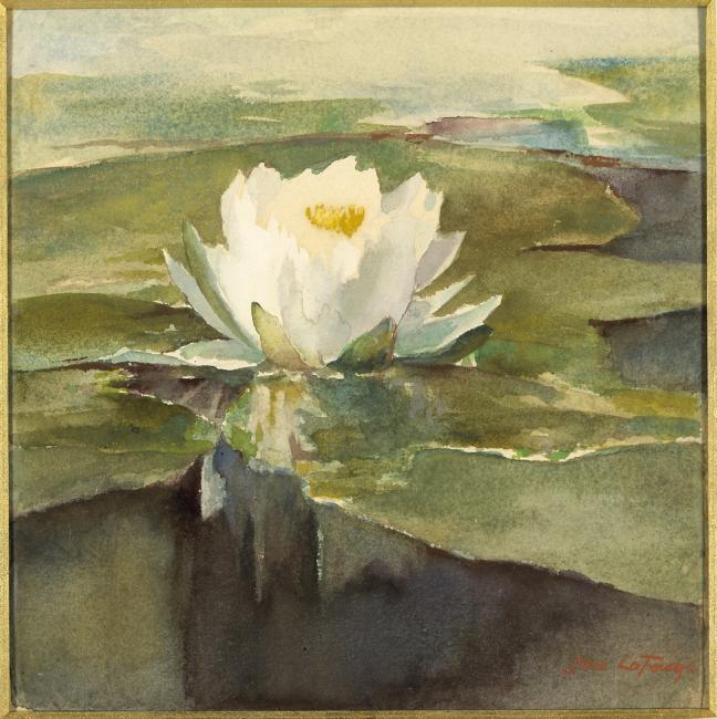 Untitled - 1929.6.70 - 52029