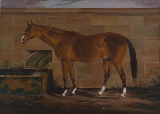 Portrait of Lexington