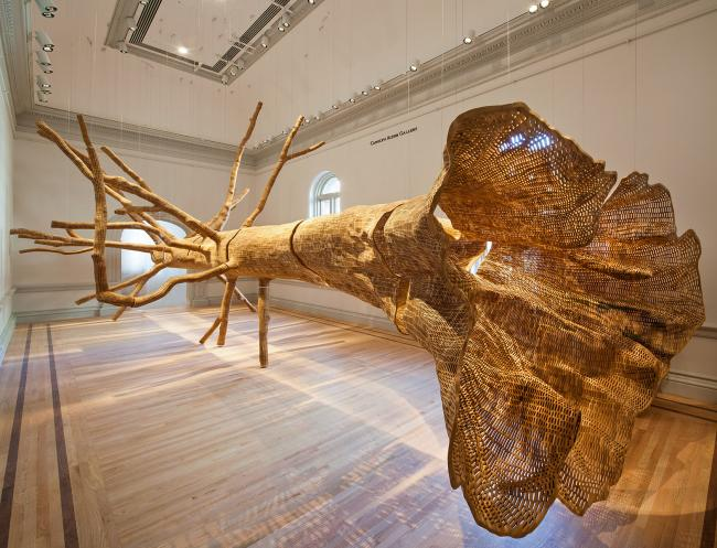 Installation shot of John Grade's Middle Fork for WONDER at the Renwick Gallery. (14 of 18)