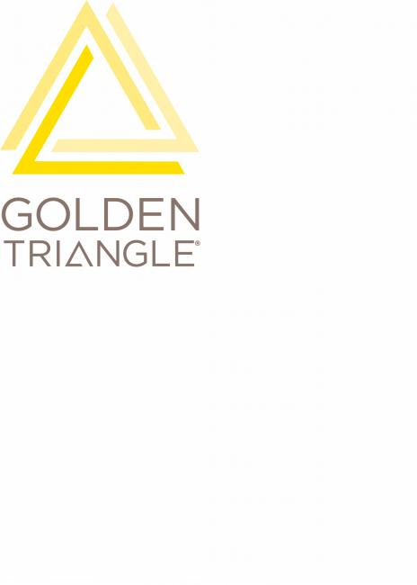 The golden triangle logo in yellow.