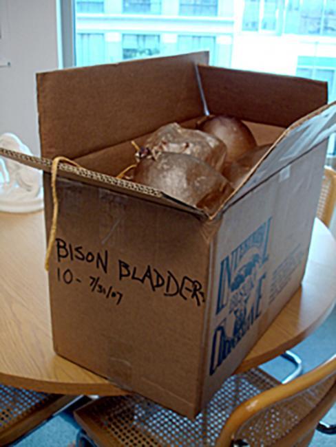 bison bladders