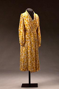 Rosa Parks' Dress